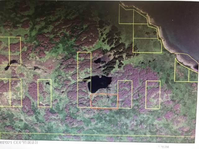 90-170 Asls Kupreanof Peninsula, Port Lions, AK 99550 (MLS #21-1937) :: Powered By Lymburner Realty