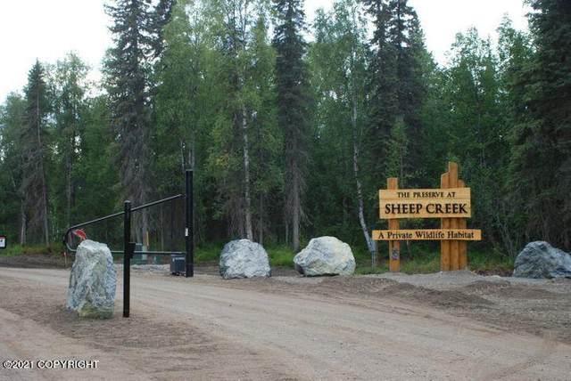 49628 S Hunter Drive, Willow, AK 99688 (MLS #21-2235) :: RMG Real Estate Network | Keller Williams Realty Alaska Group
