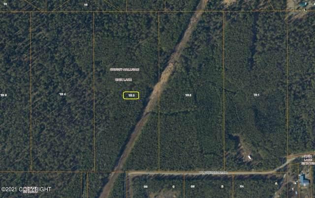 11701 W Northshore Drive, Wasilla, AK 99654 (MLS #21-2559) :: RMG Real Estate Network   Keller Williams Realty Alaska Group