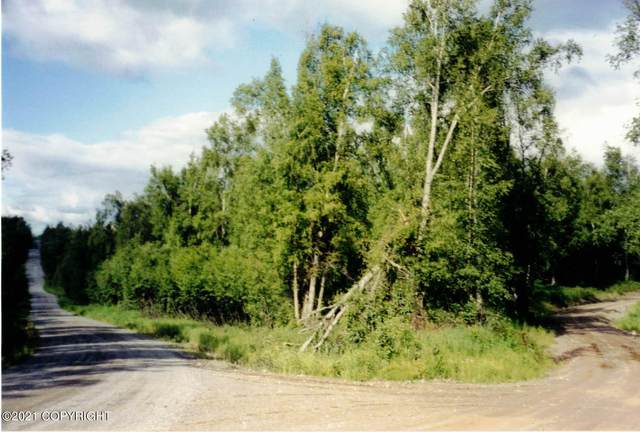 12269 S Goose Creek Road, Wasilla, AK 99654 (MLS #21-2640) :: Daves Alaska Homes