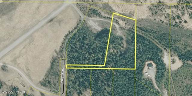 L2 Skywagon Street, Soldotna, AK 99669 (MLS #21-2747) :: Wolf Real Estate Professionals
