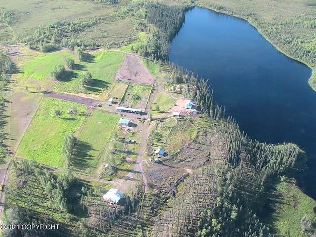 L1-2 Eden Lake, Manley Hot Springs, AK 99756 (MLS #21-2831) :: Wolf Real Estate Professionals