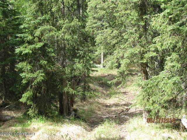 Lot 2 Trappers Trail Road, Anchorage, AK 99516 (MLS #21-2967) :: RMG Real Estate Network | Keller Williams Realty Alaska Group