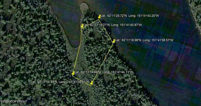Tract E Stickleback Lake, Remote, AK 99000 (MLS #21-3005) :: Wolf Real Estate Professionals