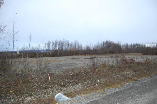 Tr B1 W Tranquility Drive, Wasilla, AK 99623 (MLS #21-3022) :: Daves Alaska Homes