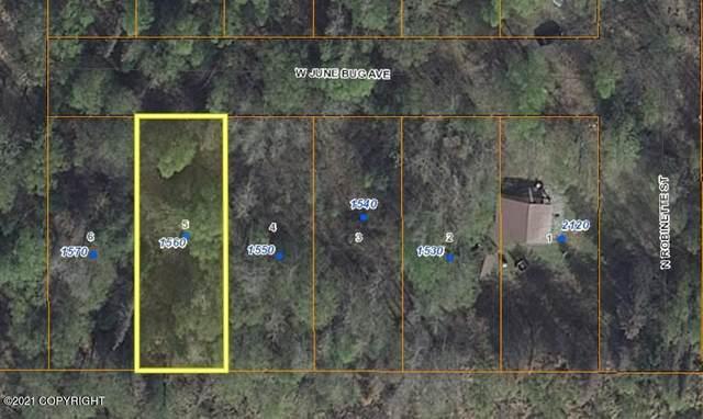 1560 June Bug Avenue, Wasilla, AK 99654 (MLS #21-3082) :: Team Dimmick