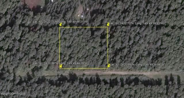 15177 W 6th Street, Wasilla, AK 99654 (MLS #21-3186) :: Wolf Real Estate Professionals