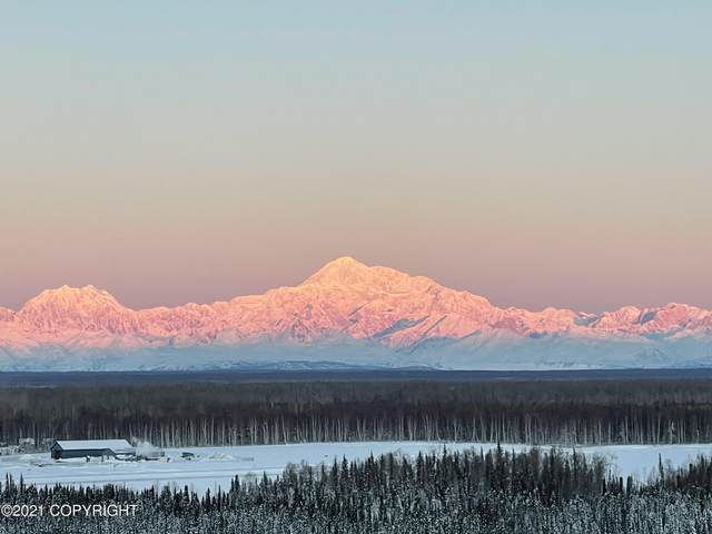 15255 E Axelsson Road, Talkeetna, AK 99676 (MLS #21-3202) :: Daves Alaska Homes