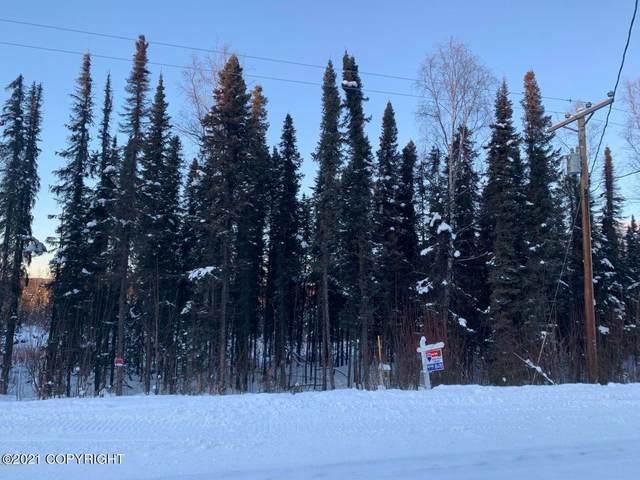 14041 W King Arthur Drive, Houston, AK 99694 (MLS #21-3301) :: Daves Alaska Homes