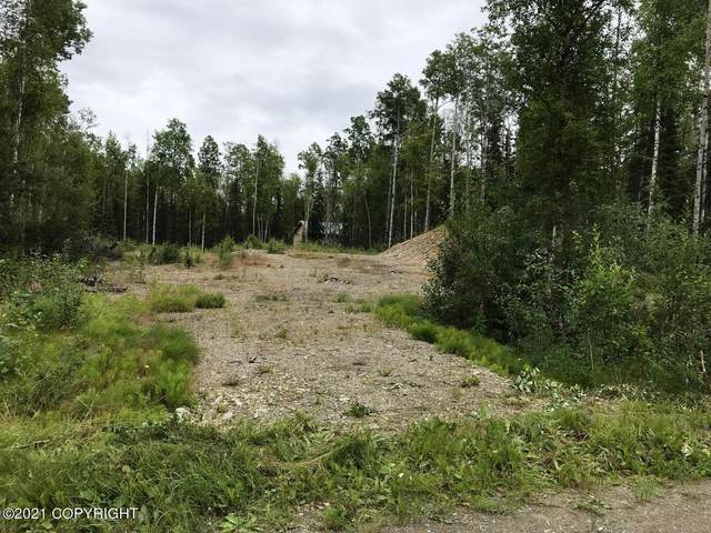 455 Wandering Way, Wasilla, AK 99623 (MLS #21-3302) :: Wolf Real Estate Professionals