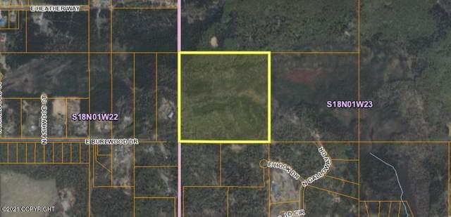 1161 E Burlwood Drive, Wasilla, AK 99654 (MLS #21-3347) :: Synergy Home Team