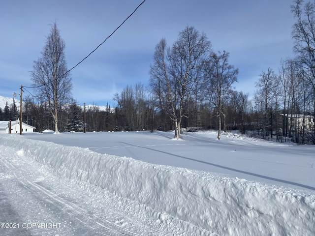 12501 E Soapstone Road, Wasilla, AK 99645 (MLS #21-3359) :: Synergy Home Team