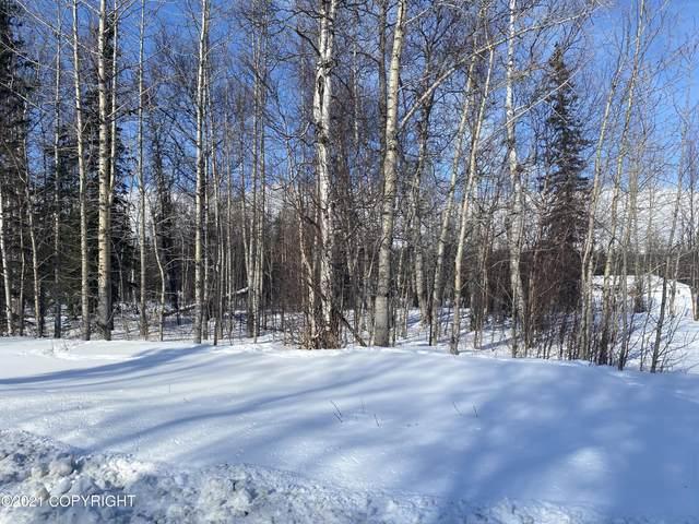 12455 E Soapstone Road, Palmer, AK 99645 (MLS #21-3360) :: RMG Real Estate Network | Keller Williams Realty Alaska Group