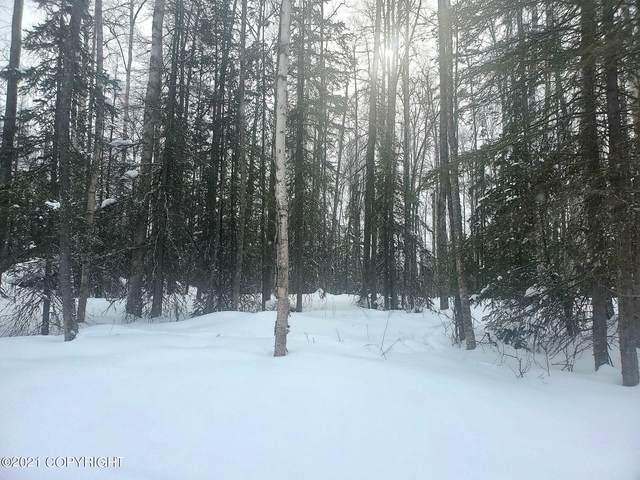 L6 B3 Polka Dot Acres #1, Big Lake, AK 99623 (MLS #21-3409) :: RMG Real Estate Network | Keller Williams Realty Alaska Group