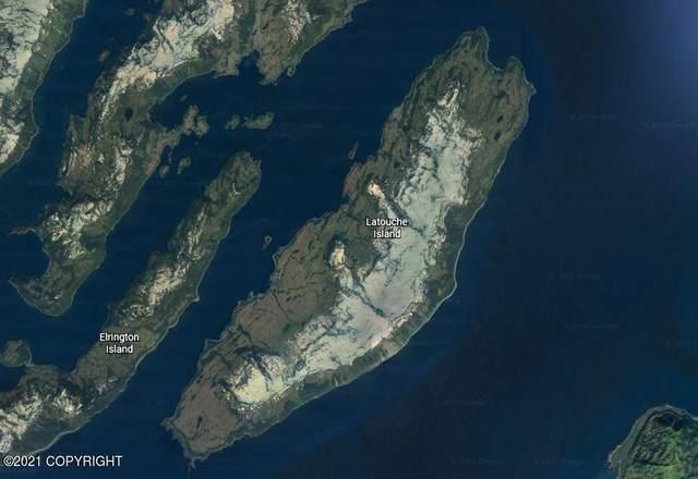 L5 B9 Latouche Island, Remote, AK 99000 (MLS #21-3492) :: Wolf Real Estate Professionals