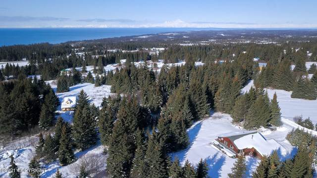 67385 Timmerman Court, Homer, AK 99603 (MLS #21-3521) :: Wolf Real Estate Professionals