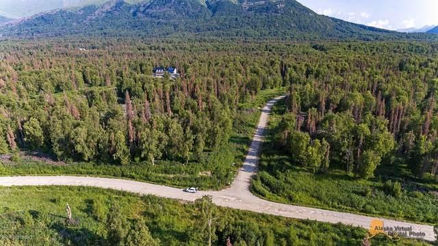 7390 E Forgiven Drive, Palmer, AK 99645 (MLS #21-3634) :: RMG Real Estate Network | Keller Williams Realty Alaska Group