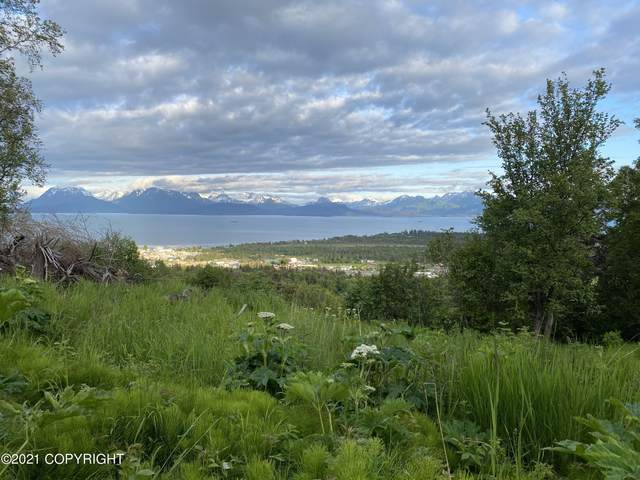 L14 Kestrel Circle, Homer, AK 99603 (MLS #21-366) :: Alaska Realty Experts