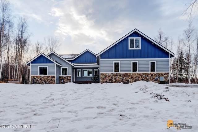 10480 E Snowgoose Circle, Palmer, AK 99645 (MLS #21-367) :: Wolf Real Estate Professionals