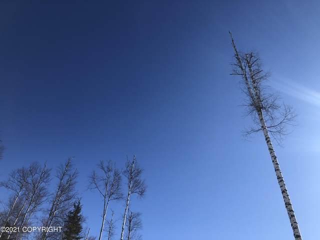 2908 S Knollwood Drive, Big Lake, AK 99652 (MLS #21-3710) :: Daves Alaska Homes