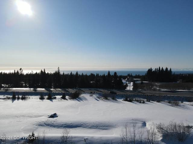 41110 Sterling Highway, Homer, AK 99603 (MLS #21-3768) :: Wolf Real Estate Professionals