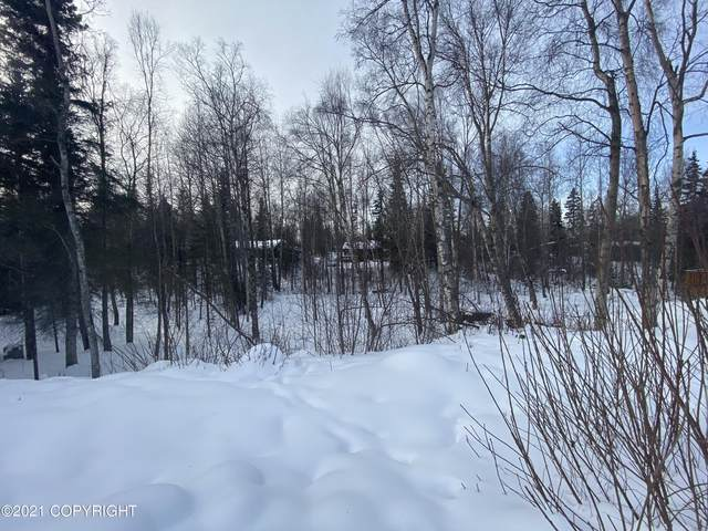 L19B Telequana Drive, Anchorage, AK 99517 (MLS #21-3827) :: RMG Real Estate Network | Keller Williams Realty Alaska Group