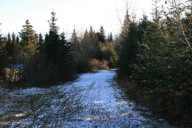 L2 Mossberry, Homer, AK 99603 (MLS #21-3861) :: Wolf Real Estate Professionals