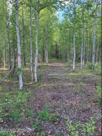 13371 Maplewood Drive, Wasilla, AK 99652 (MLS #21-3945) :: Daves Alaska Homes
