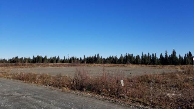22336 Sonny Street, Anchor Point, AK 99556 (MLS #21-416) :: Wolf Real Estate Professionals