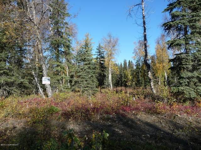 L7 B7 Newberry, Nikiski/North Kenai, AK 99635 (MLS #21-4169) :: Wolf Real Estate Professionals