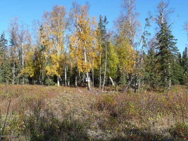 L5 B7 Newberry, Nikiski/North Kenai, AK 99635 (MLS #21-4170) :: Wolf Real Estate Professionals