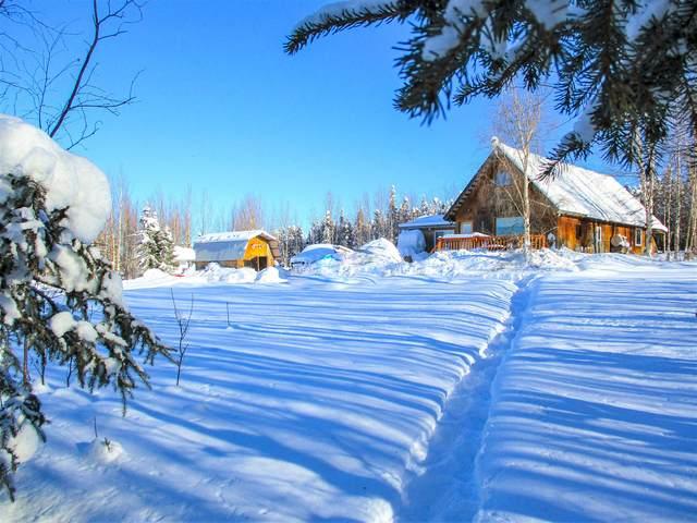 746 Goldstreak Road, Fairbanks, AK 99712 (MLS #21-4238) :: Wolf Real Estate Professionals