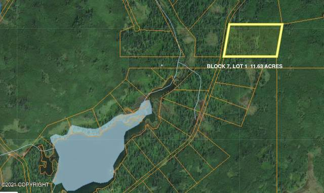 B7 L1 No Road, Remote, AK 99000 (MLS #21-4243) :: Wolf Real Estate Professionals