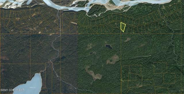 L3 B7 E Bluff Trail, Talkeetna, AK 99676 (MLS #21-4317) :: Wolf Real Estate Professionals