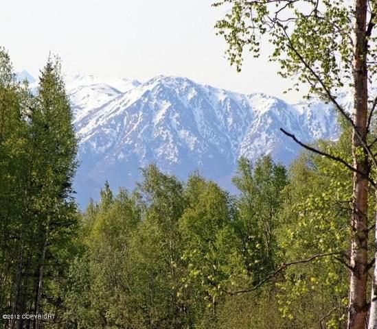 Tr B-1 Primrose Pointe, Wasilla, AK 99654 (MLS #21-4363) :: Wolf Real Estate Professionals