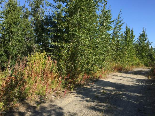 63727 Oil Well Road, Ninilchik, AK 99639 (MLS #21-445) :: Wolf Real Estate Professionals