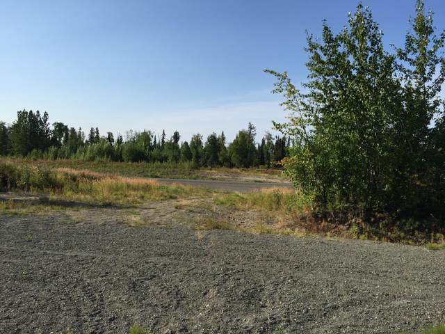 63767 Oil Well Road, Ninilchik, AK 99639 (MLS #21-448) :: Wolf Real Estate Professionals
