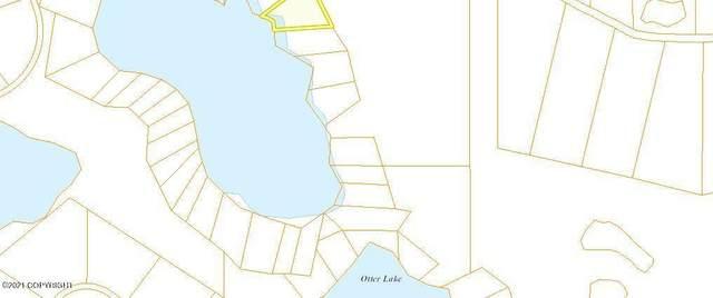 Tr B No Road, Remote, AK 99000 (MLS #21-4589) :: Wolf Real Estate Professionals