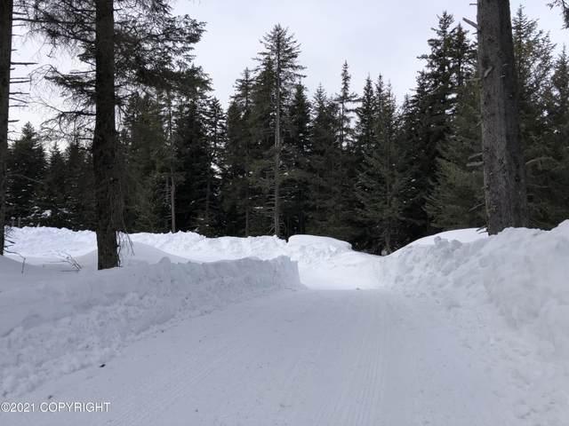 L21 B12 Jakolof Bay Road, Seldovia, AK 99663 (MLS #21-4594) :: Powered By Lymburner Realty