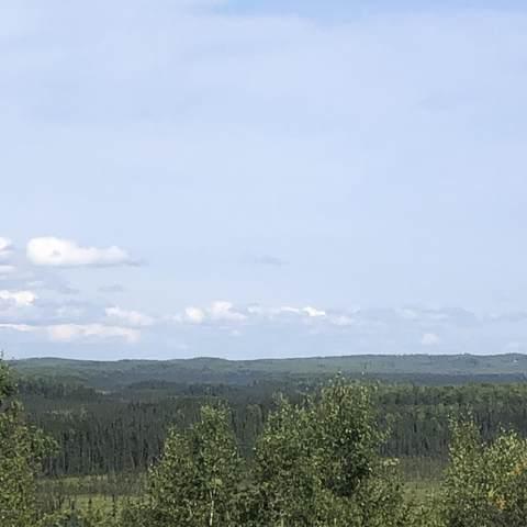 B7 L1 W Lesser Canada Drive, Wasilla, AK 99654 (MLS #21-4625) :: Daves Alaska Homes
