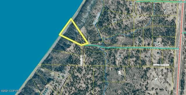 57810 Jellyfish Avenue, Clam Gulch, AK 99568 (MLS #21-4656) :: RMG Real Estate Network | Keller Williams Realty Alaska Group