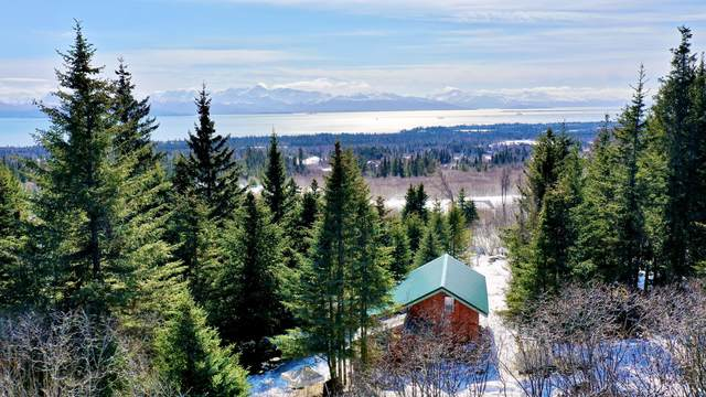 54765 E East End Road, Homer, AK 99603 (MLS #21-4738) :: Wolf Real Estate Professionals