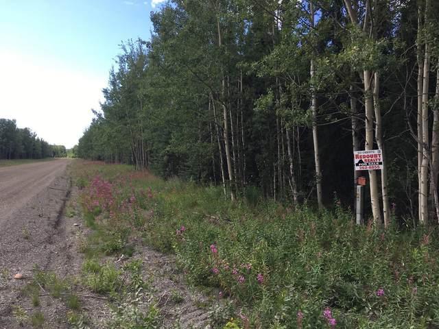 34560 Browns Lake Road, Soldotna, AK 99669 (MLS #21-4789) :: Wolf Real Estate Professionals