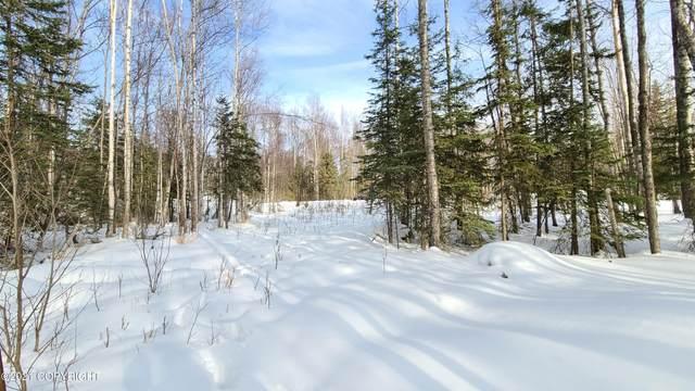 9798 S Overlook Drive, Wasilla, AK 99654 (MLS #21-4875) :: RMG Real Estate Network | Keller Williams Realty Alaska Group