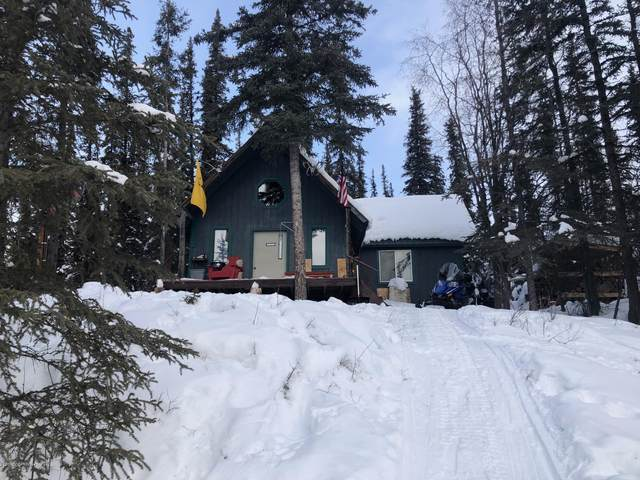 Tr A Glenn Highway, Glennallen, AK 99588 (MLS #21-4914) :: Wolf Real Estate Professionals