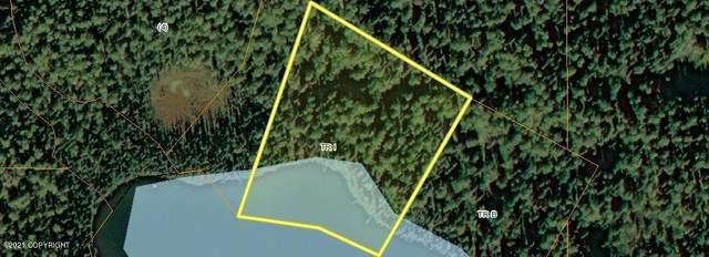 Tr I No Road, Remote, AK 99000 (MLS #21-4917) :: Wolf Real Estate Professionals