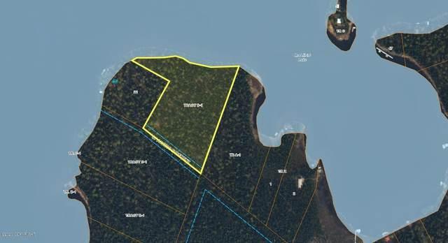 Tr B1 No Road, Willow, AK 99688 (MLS #21-4964) :: Daves Alaska Homes