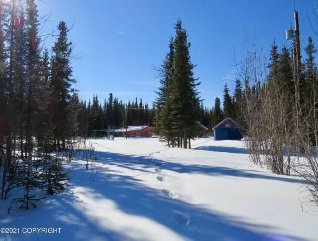 56 Sundog Trail, Tok, AK 99780 (MLS #21-4976) :: Wolf Real Estate Professionals