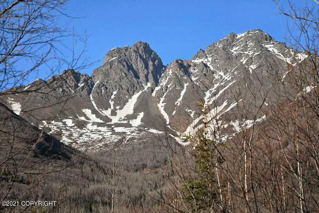 Mi 7 Eklutna Lake Road, Chugiak, AK 99567 (MLS #21-5049) :: Team Dimmick