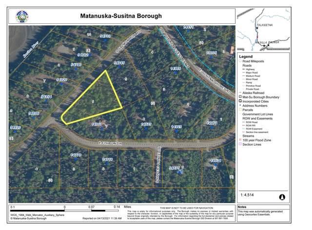NHN S Salmon Run Road, Willow, AK 99688 (MLS #21-5102) :: Team Dimmick